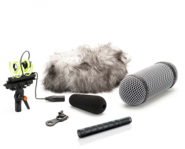 DPA d:dicate 4017C-R Super Cardioid Shotgun Microphone