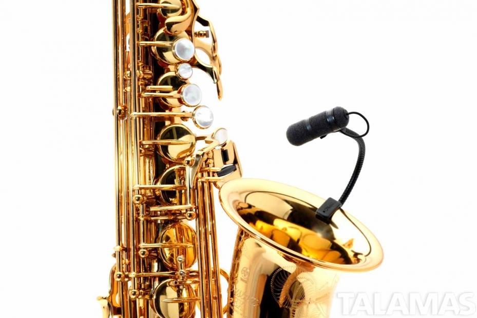 DPA 4099S Clip Instrument