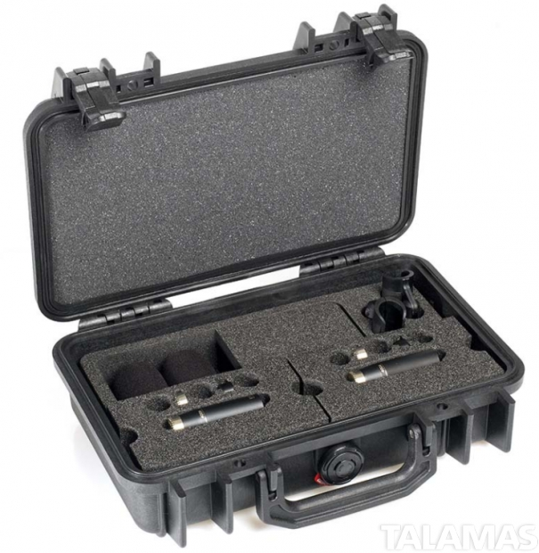 DPA ST4006C d:dicate Omni Stereo Pair with two Compact Omni Microphones